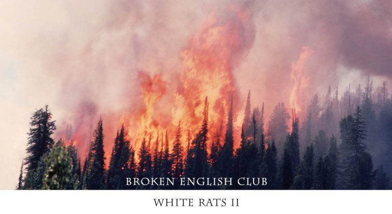 Broken English Club – Wildlife