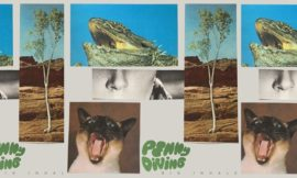 Penny Diving – Can You Feel It